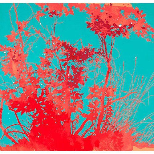 printscarlet